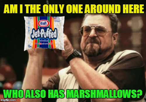 Am I The Only One Around Here Meme | AM I THE ONLY ONE AROUND HERE WHO ALSO HAS MARSHMALLOWS? | image tagged in memes,am i the only one around here | made w/ Imgflip meme maker
