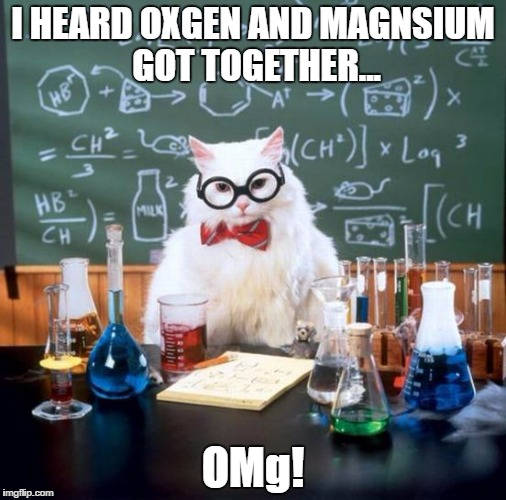 The punny cat strikes again! | I HEARD OXGEN AND MAGNSIUM GOT TOGETHER... OMg! | image tagged in memes,chemistry cat | made w/ Imgflip meme maker