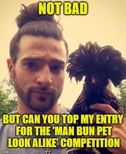 NOT BAD BUT CAN YOU TOP MY ENTRY FOR THE 'MAN BUN PET LOOK ALIKE' COMPETITION | made w/ Imgflip meme maker