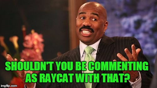 Steve Harvey Meme | SHOULDN'T YOU BE COMMENTING AS RAYCAT WITH THAT? | image tagged in memes,steve harvey | made w/ Imgflip meme maker