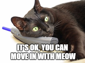 IT'S OK, YOU CAN MOVE IN WITH MEOW | made w/ Imgflip meme maker