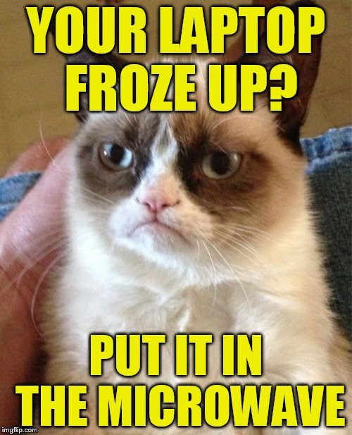 Grumpy Cat Meme | YOUR LAPTOP FROZE UP? PUT IT IN THE MICROWAVE | image tagged in memes,grumpy cat | made w/ Imgflip meme maker