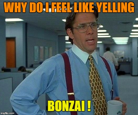 That Would Be Great Meme | WHY DO I FEEL LIKE YELLING BONZAI ! | image tagged in memes,that would be great | made w/ Imgflip meme maker