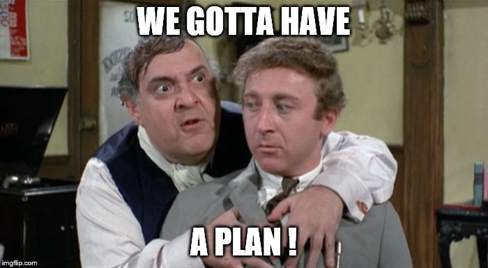 Bialistock & Bloom | WE GOTTA HAVE A PLAN ! | image tagged in bialistock  bloom | made w/ Imgflip meme maker