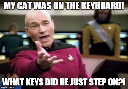 Picard Wtf Meme | MY CAT WAS ON THE KEYBOARD! WHAT KEYS DID HE JUST STEP ON?! | image tagged in memes,picard wtf | made w/ Imgflip meme maker