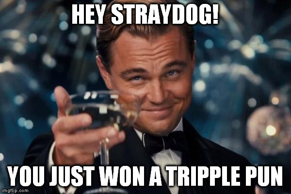 Leonardo Dicaprio Cheers Meme | HEY STRAYDOG! YOU JUST WON A TRIPPLE PUN | image tagged in memes,leonardo dicaprio cheers | made w/ Imgflip meme maker