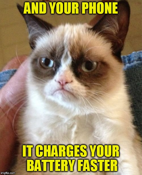 Grumpy Cat Meme | AND YOUR PHONE IT CHARGES YOUR BATTERY FASTER | image tagged in memes,grumpy cat | made w/ Imgflip meme maker