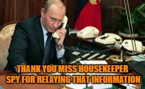 THANK YOU MISS HOUSEKEEPER SPY FOR RELAYING THAT INFORMATION | made w/ Imgflip meme maker