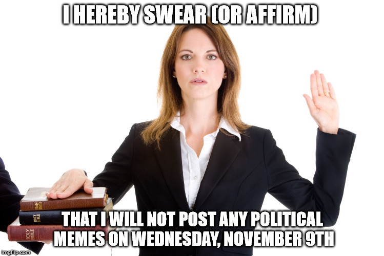 My solemn oath... | I HEREBY SWEAR (OR AFFIRM) THAT I WILL NOT POST ANY POLITICAL MEMES ON WEDNESDAY, NOVEMBER 9TH | image tagged in oath,solemn | made w/ Imgflip meme maker