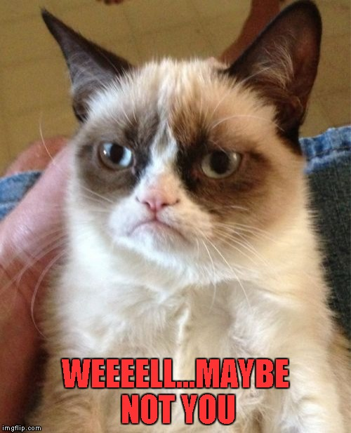 Grumpy Cat Meme | WEEEELL...MAYBE NOT YOU | image tagged in memes,grumpy cat | made w/ Imgflip meme maker