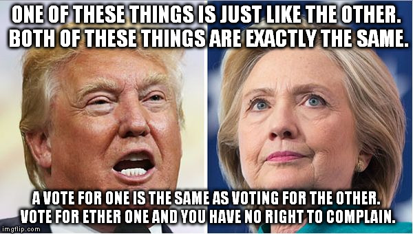 Hillary Trump | ONE OF THESE THINGS IS JUST LIKE THE OTHER. BOTH OF THESE THINGS ARE EXACTLY THE SAME. A VOTE FOR ONE IS THE SAME AS VOTING FOR THE OTHER. V | image tagged in hillary trump | made w/ Imgflip meme maker