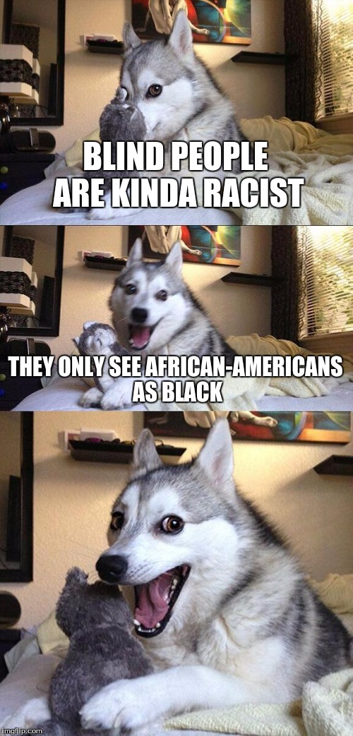 IDK | BLIND PEOPLE ARE KINDA RACIST THEY ONLY SEE AFRICAN-AMERICANS AS BLACK | image tagged in memes,bad pun dog,what am i doing with my life | made w/ Imgflip meme maker
