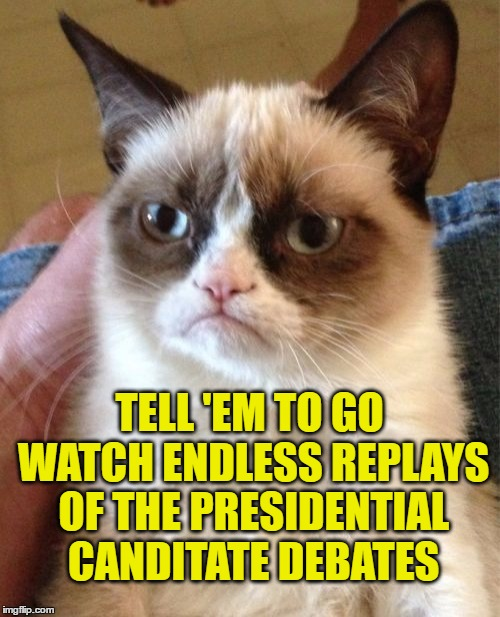 Grumpy Cat Meme | TELL 'EM TO GO WATCH ENDLESS REPLAYS OF THE PRESIDENTIAL CANDITATE DEBATES | image tagged in memes,grumpy cat | made w/ Imgflip meme maker