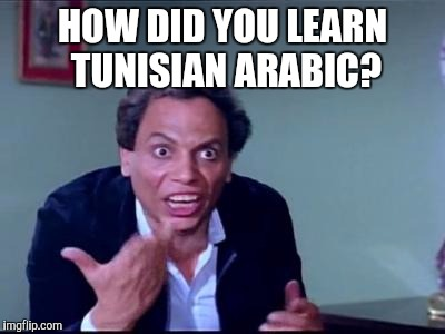 HOW DID YOU LEARN TUNISIAN ARABIC? | image tagged in adel imam,arabic,school,language | made w/ Imgflip meme maker