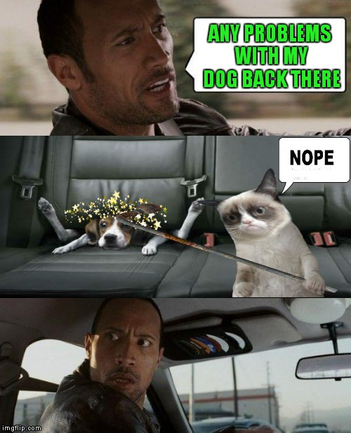 The Rock Driving Meme | ANY PROBLEMS WITH MY DOG BACK THERE | image tagged in memes,the rock driving | made w/ Imgflip meme maker