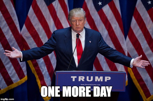 Trump Bruh | ONE MORE DAY | image tagged in trump bruh | made w/ Imgflip meme maker