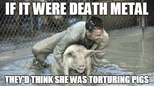 IF IT WERE DEATH METAL THEY'D THINK SHE WAS TORTURING PIGS | made w/ Imgflip meme maker