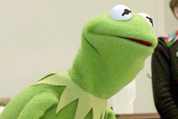 Did you know kermit Meme Template