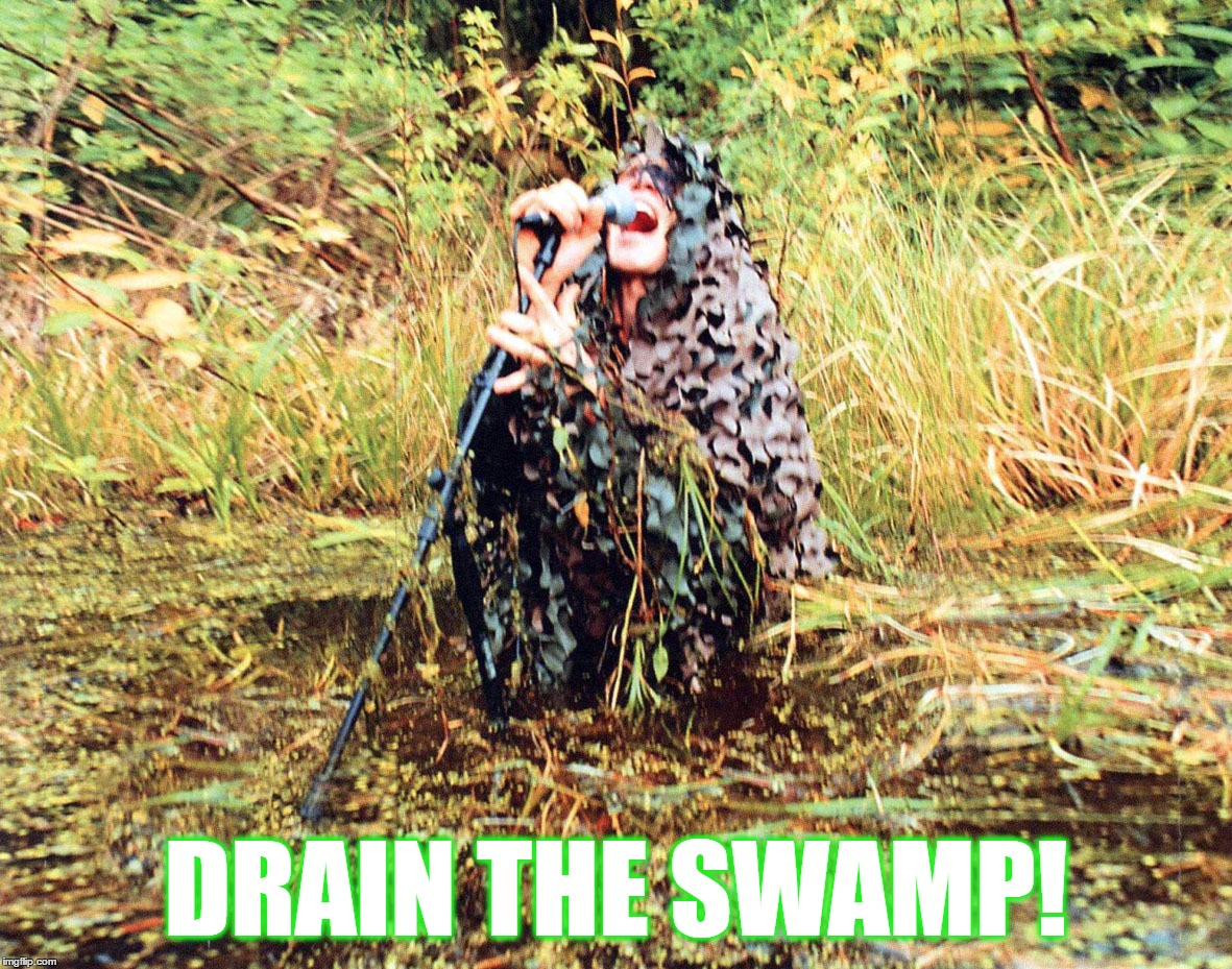 Drain the Swamp! | DRAIN THE SWAMP! | image tagged in drain,swamp,trump,morbid,azagthoth,angel | made w/ Imgflip meme maker