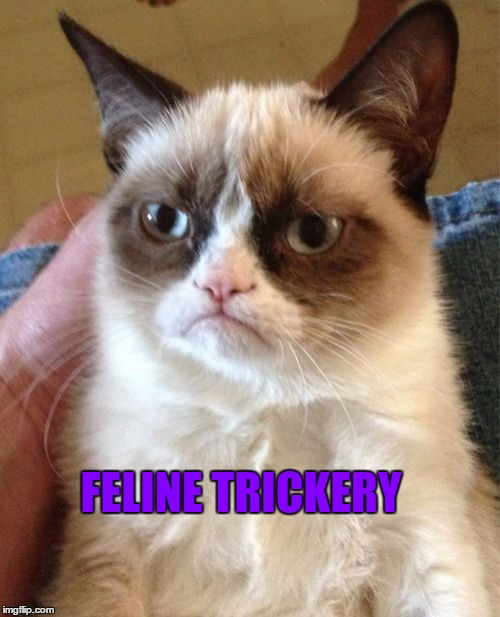 Grumpy Cat Meme | FELINE TRICKERY | image tagged in memes,grumpy cat | made w/ Imgflip meme maker