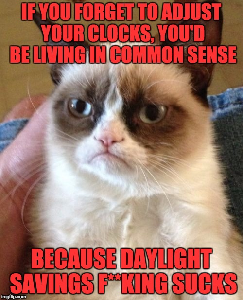 Grumpy Cat Meme | IF YOU FORGET TO ADJUST YOUR CLOCKS, YOU'D BE LIVING IN COMMON SENSE BECAUSE DAYLIGHT SAVINGS F**KING SUCKS | image tagged in memes,grumpy cat | made w/ Imgflip meme maker