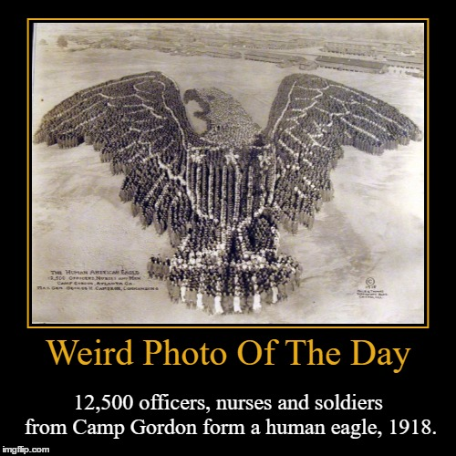 My Dentist Used To Have Old Pictures Like These In All Rooms They Had Equipment. | Weird Photo Of The Day | 12,500 officers, nurses and soldiers from Camp Gordon form a human eagle, 1918. | image tagged in funny,demotivationals,weird,photo of the day,camp gordon,human eagle | made w/ Imgflip demotivational maker