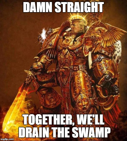Trump Flame Warrior | DAMN STRAIGHT TOGETHER, WE'LL DRAIN THE SWAMP | image tagged in trump flame warrior | made w/ Imgflip meme maker