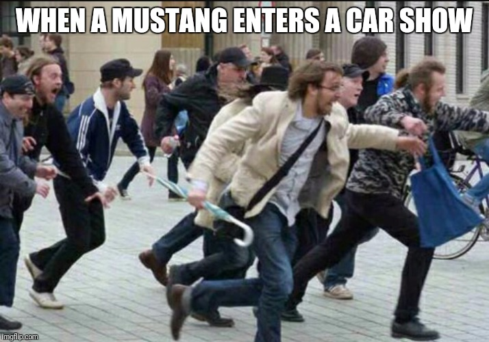 WHEN A MUSTANG ENTERS A CAR SHOW | image tagged in car meme | made w/ Imgflip meme maker