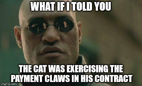 Matrix Morpheus Meme | WHAT IF I TOLD YOU THE CAT WAS EXERCISING THE PAYMENT CLAWS IN HIS CONTRACT | image tagged in memes,matrix morpheus | made w/ Imgflip meme maker