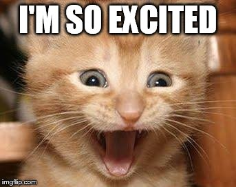Excited Cat Meme | I'M SO EXCITED | image tagged in memes,excited cat | made w/ Imgflip meme maker