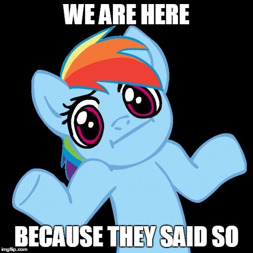 Pony Shrugs | WE ARE HERE BECAUSE THEY SAID SO | image tagged in memes,pony shrugs | made w/ Imgflip meme maker