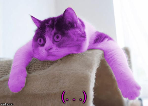 RayCat Stare | (. . .) | image tagged in raycat stare | made w/ Imgflip meme maker