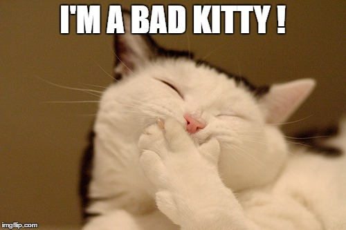I'M A BAD KITTY ! | made w/ Imgflip meme maker