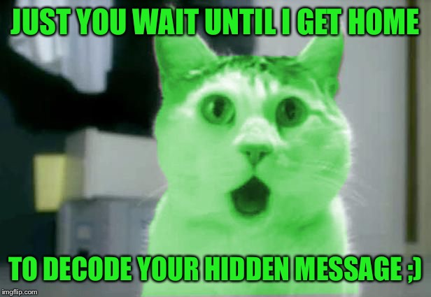 OMG RayCat | JUST YOU WAIT UNTIL I GET HOME TO DECODE YOUR HIDDEN MESSAGE ;) | image tagged in omg raycat | made w/ Imgflip meme maker