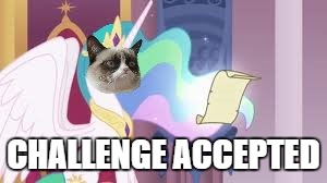 Grumpy Cat Celestia | CHALLENGE ACCEPTED | image tagged in grumpy cat celestia | made w/ Imgflip meme maker