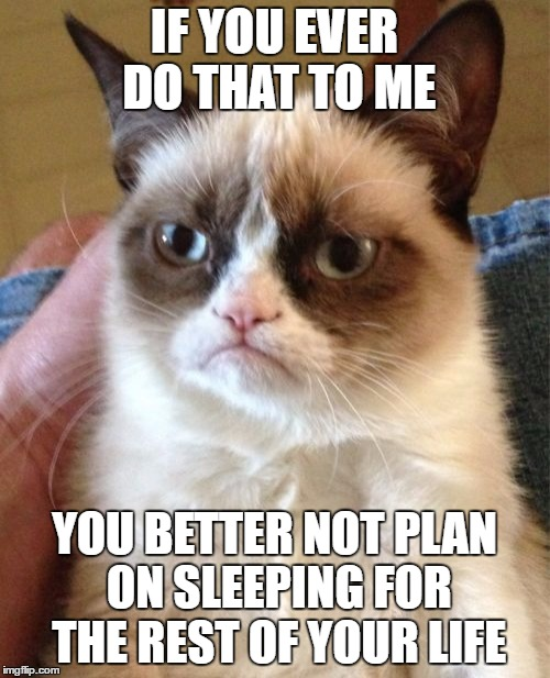 Grumpy Cat Meme | IF YOU EVER DO THAT TO ME YOU BETTER NOT PLAN ON SLEEPING FOR THE REST OF YOUR LIFE | image tagged in memes,grumpy cat | made w/ Imgflip meme maker
