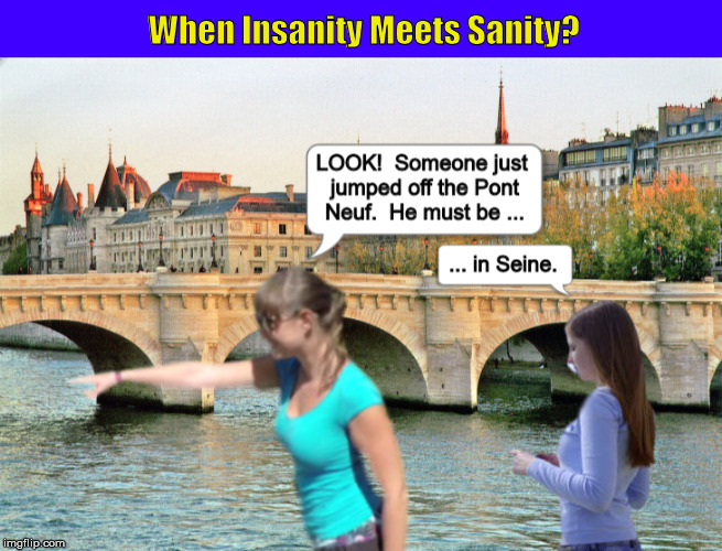 When Insanity Meets Sanity?  | image tagged in funny,bizarro,pont neuf,jumped off a bridge,insane,when sanity meets insanity | made w/ Imgflip meme maker