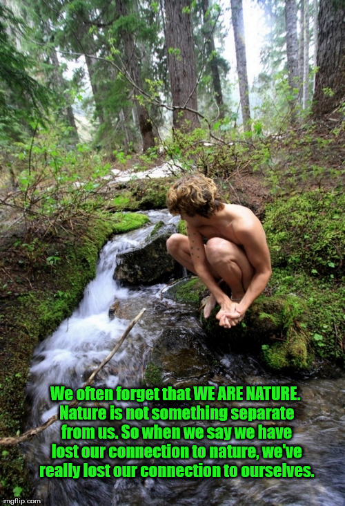 We often forget that WE ARE NATURE. Nature is not something separate from us. So when we say we have lost our connection to nature, we've re | image tagged in mother nature | made w/ Imgflip meme maker