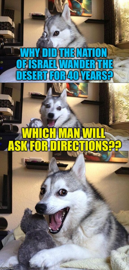Bad Pun Dog Meme | WHY DID THE NATION OF ISRAEL WANDER THE DESERT FOR 40 YEARS? WHICH MAN WILL ASK FOR DIRECTIONS?? | image tagged in memes,bad pun dog | made w/ Imgflip meme maker