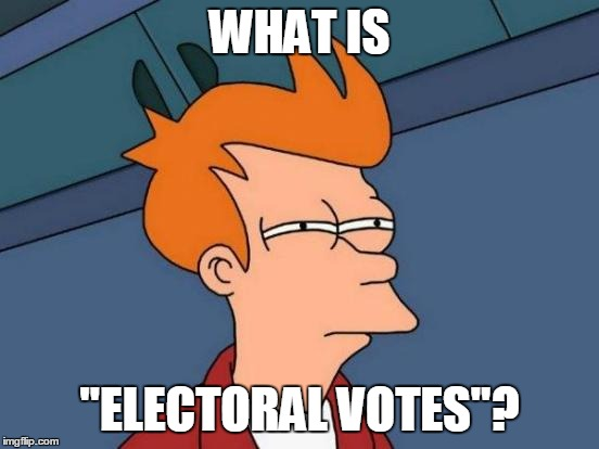 "Futurama Fry Meme | WHAT IS ""ELECTORAL VOTES""? 