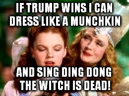 wizard of oz | IF TRUMP WINS I CAN DRESS LIKE A MUNCHKIN AND SING DING DONG THE WITCH IS DEAD! | image tagged in wizard of oz | made w/ Imgflip meme maker