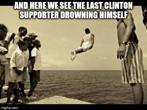 dolphins swimming jumping dive | AND HERE WE SEE THE LAST CLINTON SUPPORTER DROWNING HIMSELF | image tagged in dolphins swimming jumping dive | made w/ Imgflip meme maker