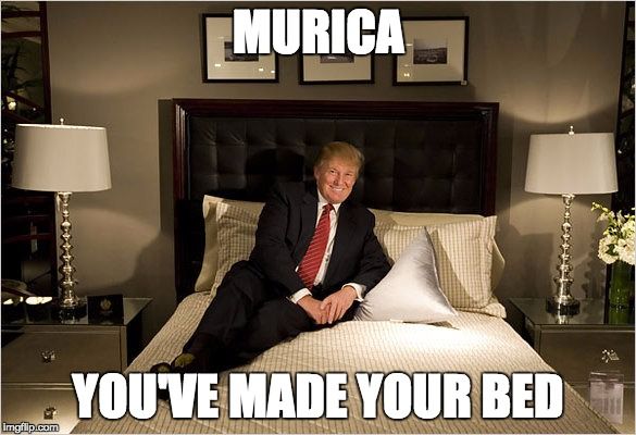 MURICA YOU'VE MADE YOUR BED | image tagged in murica | made w/ Imgflip meme maker