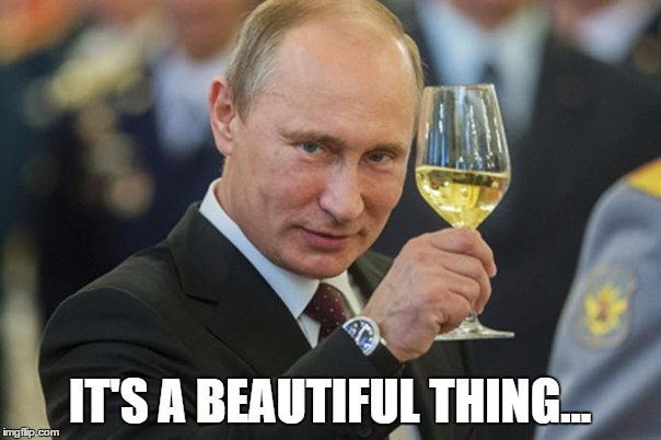Putin Cheers | IT'S A BEAUTIFUL THING... | image tagged in putin cheers | made w/ Imgflip meme maker