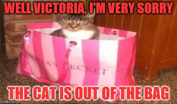 WELL VICTORIA, I'M VERY SORRY THE CAT IS OUT OF THE BAG | made w/ Imgflip meme maker