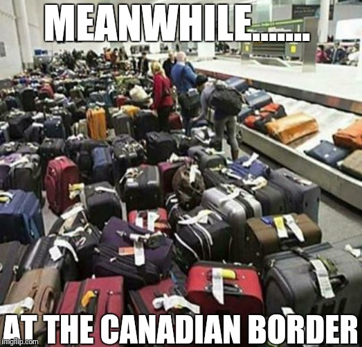 Canadian border | MEANWHILE....... AT THE CANADIAN BORDER | image tagged in canada,donald trump | made w/ Imgflip meme maker