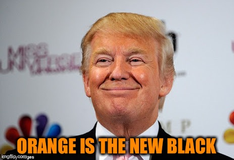 Trump replacing Obama? This one is funny no matter what side you're on  | ORANGE IS THE NEW BLACK | image tagged in donald trump approves,hillary clinton,election 2016 | made w/ Imgflip meme maker