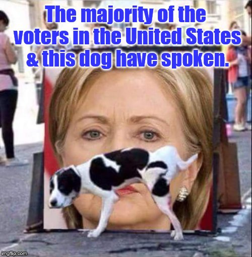 Bye Hillary  | The majority of the voters in the United States & this dog have spoken. | image tagged in dog peeing on hillary clinton | made w/ Imgflip meme maker