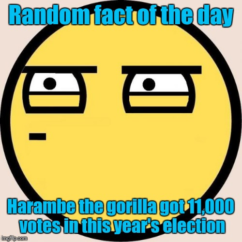 It's true, search it up | Random fact of the day Harambe the gorilla got 11,000 votes in this year's election | image tagged in random,useless fact of the day,memes,trhtimmy | made w/ Imgflip meme maker