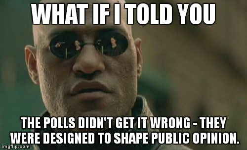 The polls didn't get it wrong. |  WHAT IF I TOLD YOU; THE POLLS DIDN'T GET IT WRONG - THEY WERE DESIGNED TO SHAPE PUBLIC OPINION. | image tagged in memes,matrix morpheus,politics,trump,hillaryclinton | made w/ Imgflip meme maker